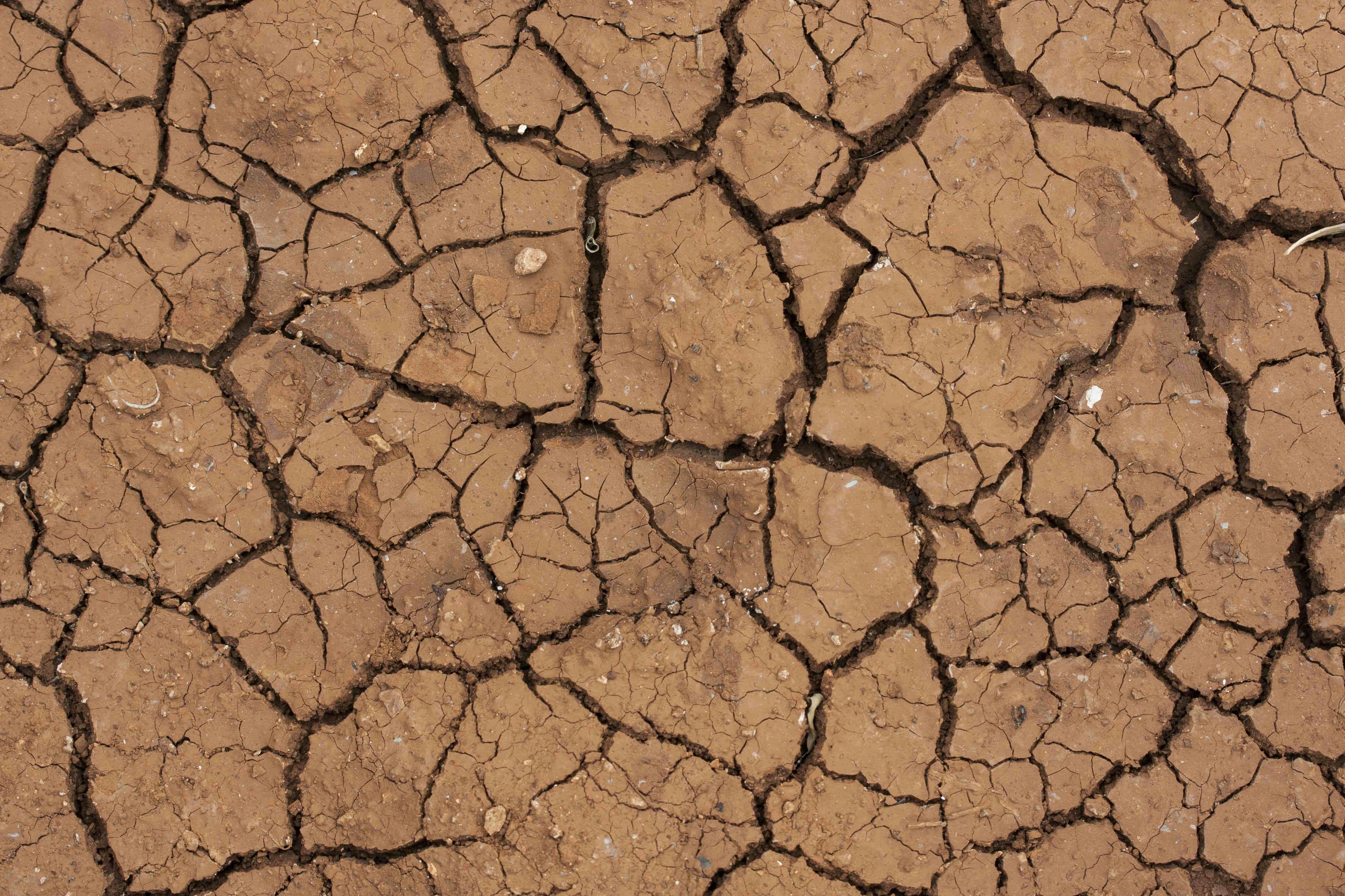 imagen-tierra-seca-ejemplo-2015-fue-ano-mas-caliente-registro-historico