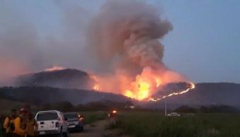 Autoridades identifican al presunto responsable del incendio en Bosque de la Primavera, en Jalisco