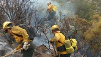 Suman 14 incendios forestales en Yucatán en el año