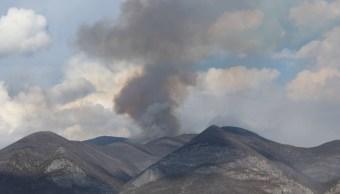 Autoridades combaten incendios forestales en 3 municipios de Tamaulipas