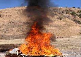 Incineran más de 57 kilos de diversos narcóticos en Nayarit