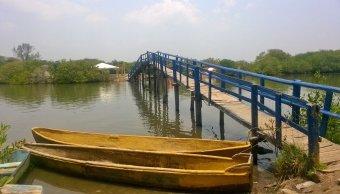 Laguna de Mandinga, una opción para vacacionar en Veracruz