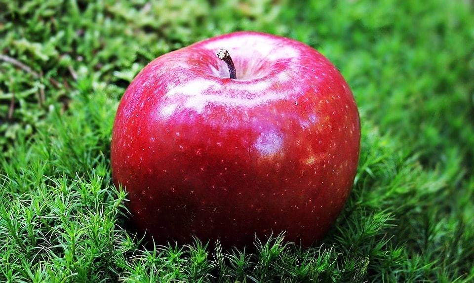 Migración pide a mujer que pague 500 dólares por manzana gratis
