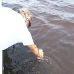 Persiste marea roja tóxica en costas de Manzanillo, Colima