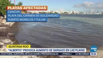 Alberto Provoca Aumento Sargazo Playas Cancún