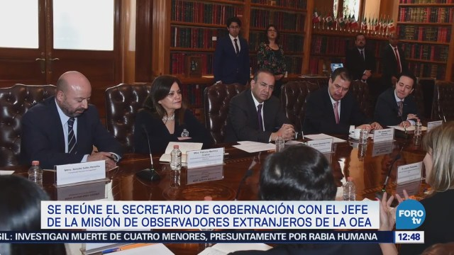 Alfonso Navarrete Reúne Representante Oea