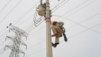 Foto: Trabajador de la Comisión Federal de Electricidad (CFE)