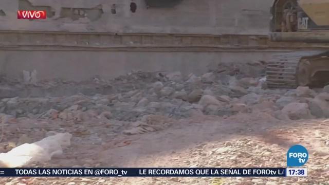 Demuelen Inmueble Dañado Temblor Xola