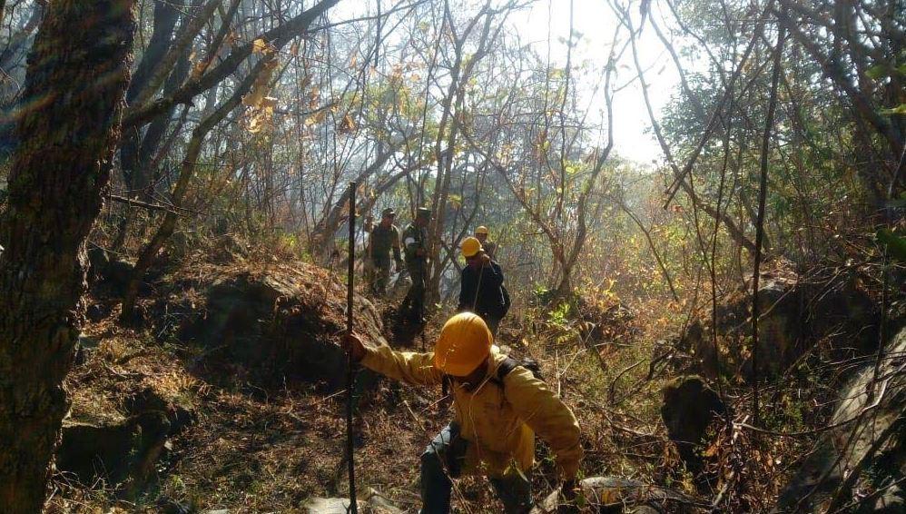 Brigadistas realizan guardarrayas para evitar que el fuego se propague en el cerro de San Juan. (Noticieros Televisa)