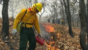 Más de 300 brigadistas atienden incendios forestales en Sinaloa