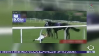 Reportera inglesa arriesga su vida por un caballo