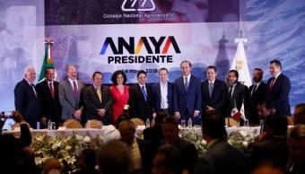 Ricardo Anaya pide la reimpresión de las boletas electorales