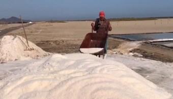Termina zafra de la sal en Colima con 75 mil toneladas de producción