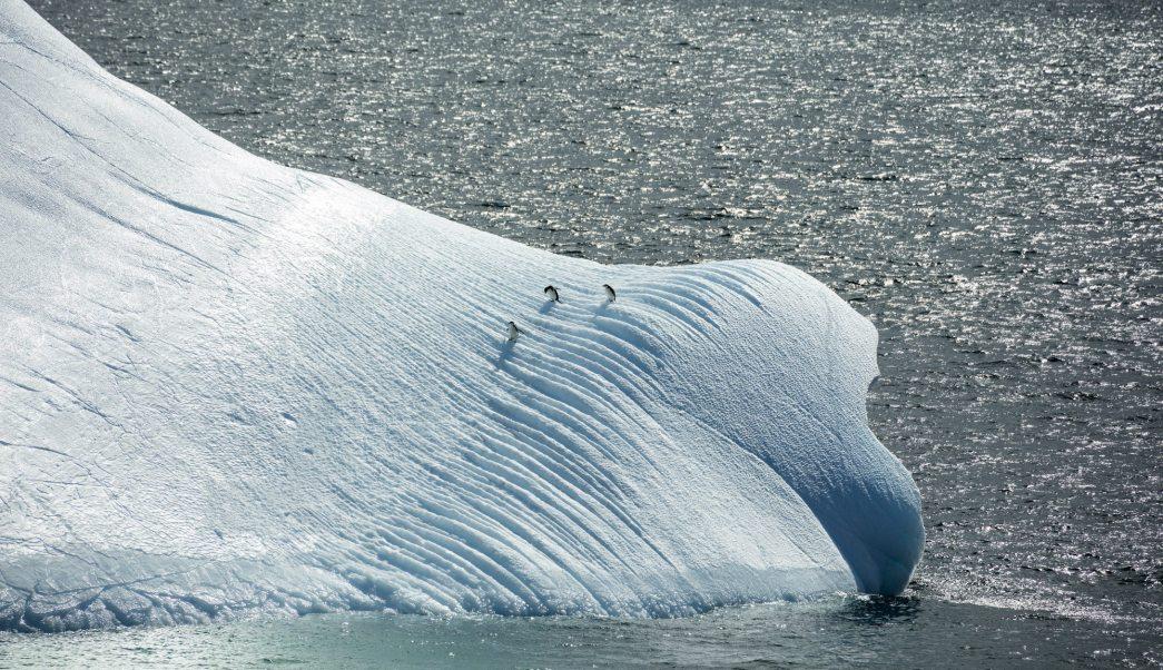 Consecuencias-calentamiento-global-Hielo -Polar-Científicos,-Antártica-Antartic