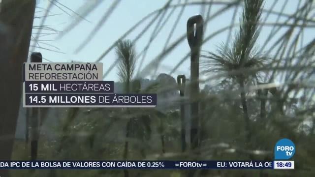 Edomex Pone Marcha Campaña Reforestación
