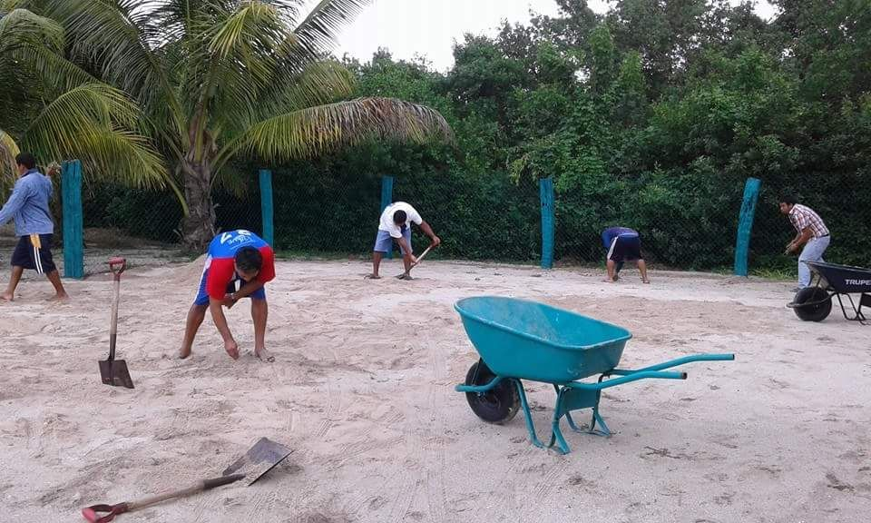 Campeche concientiza sobre la protección a la tortuga marina