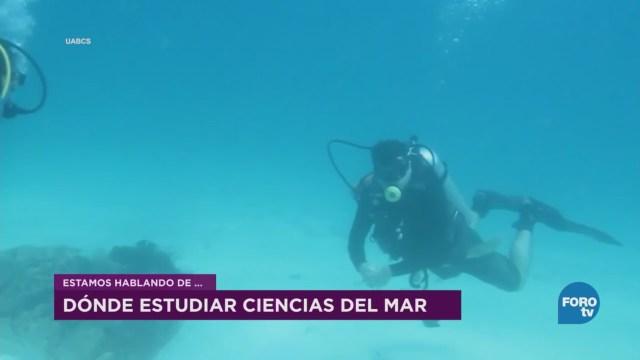 Importancia Estudio Mares Mexicanos David Salas