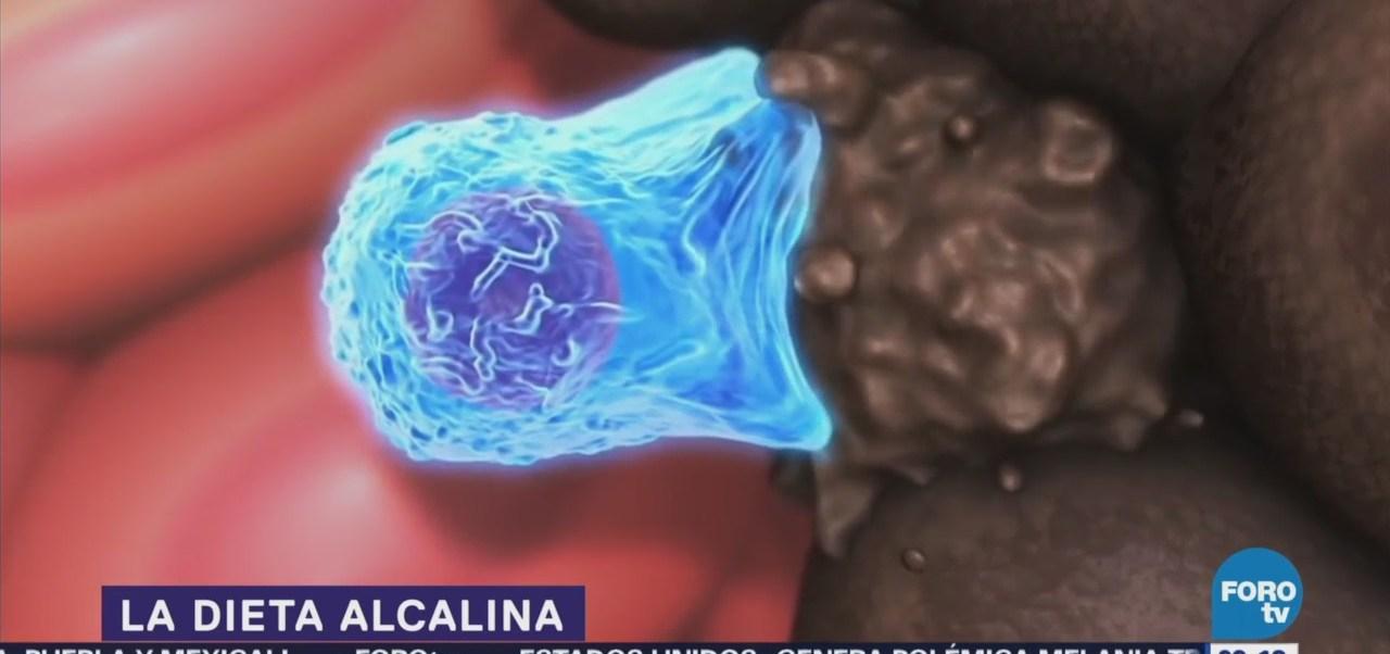 Buena Dieta Alcalina Erika Kaiser Investiga