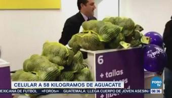 Compra 58 kilos de aguacate con