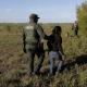 Pentágono acondiciona dos bases para acoger a inmigrantes