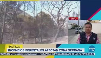 Incendios Forestales Afectan Zona Serrana Saltillo