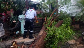 Autoridades de Colima reportan afectaciones por onda tropical 14