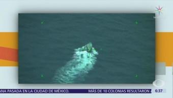 Decomisan 250 kilos de cocaína en Guerrero
