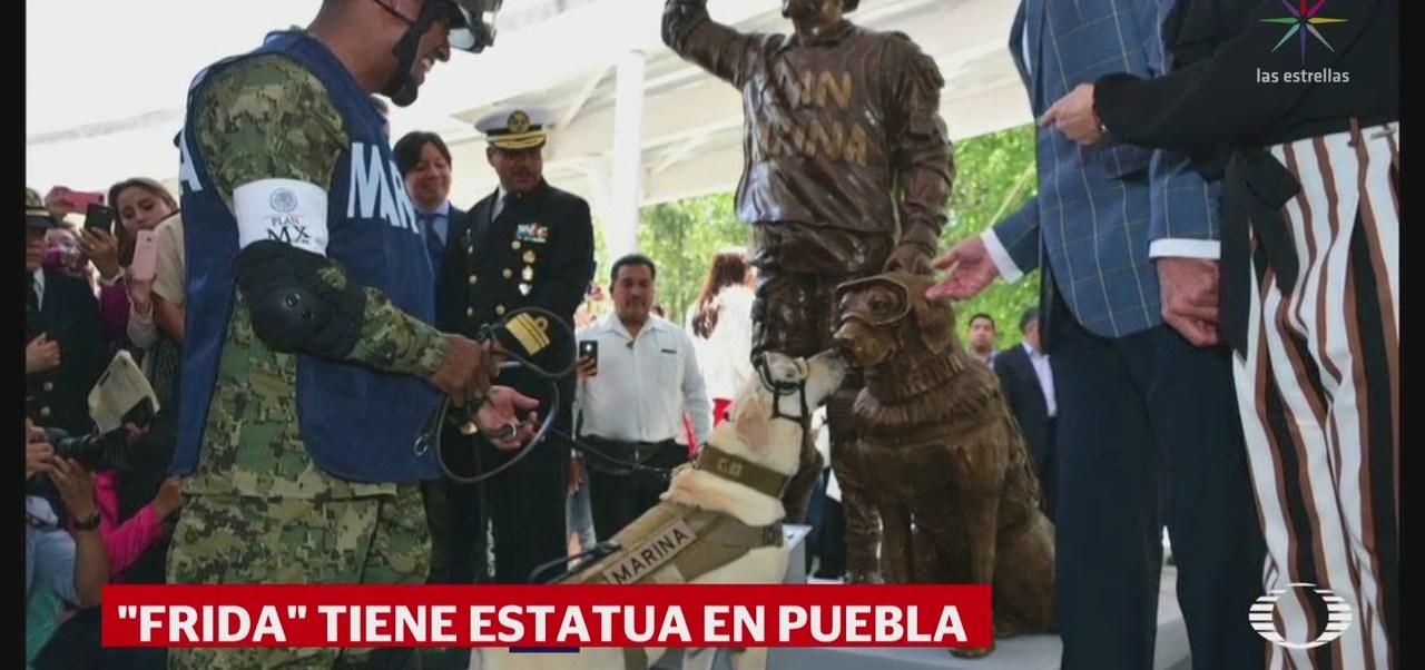 Develan estatua de la perrita Frida, en Puebla