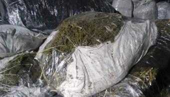 Incineran cinco toneladas de marihuana en Saltillo, Coahuila