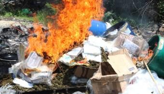 Incineran más de 8 toneladas de droga en Nuevo León