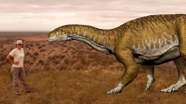 representacion-artistica-ingentia-prima-dinosaurio-hallado-san-juan-argentina