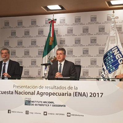 INEGI da datos duros, no hace sugerencias, explica Julio Santaella