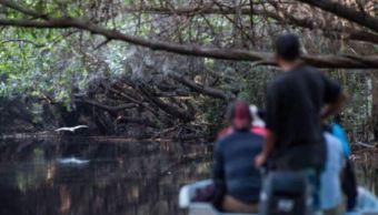 reserva mangle colima atrae miles turistas verano