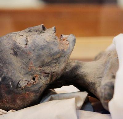FOTOS: La momia mitad niña mitad cocodrilo oculta en un palacio turco