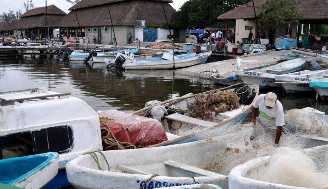 Pescadores en Campeche tendrán seguro de vida