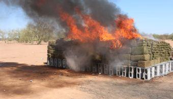 PGR incinera tonelada y media de narcóticos en Hermosillo
