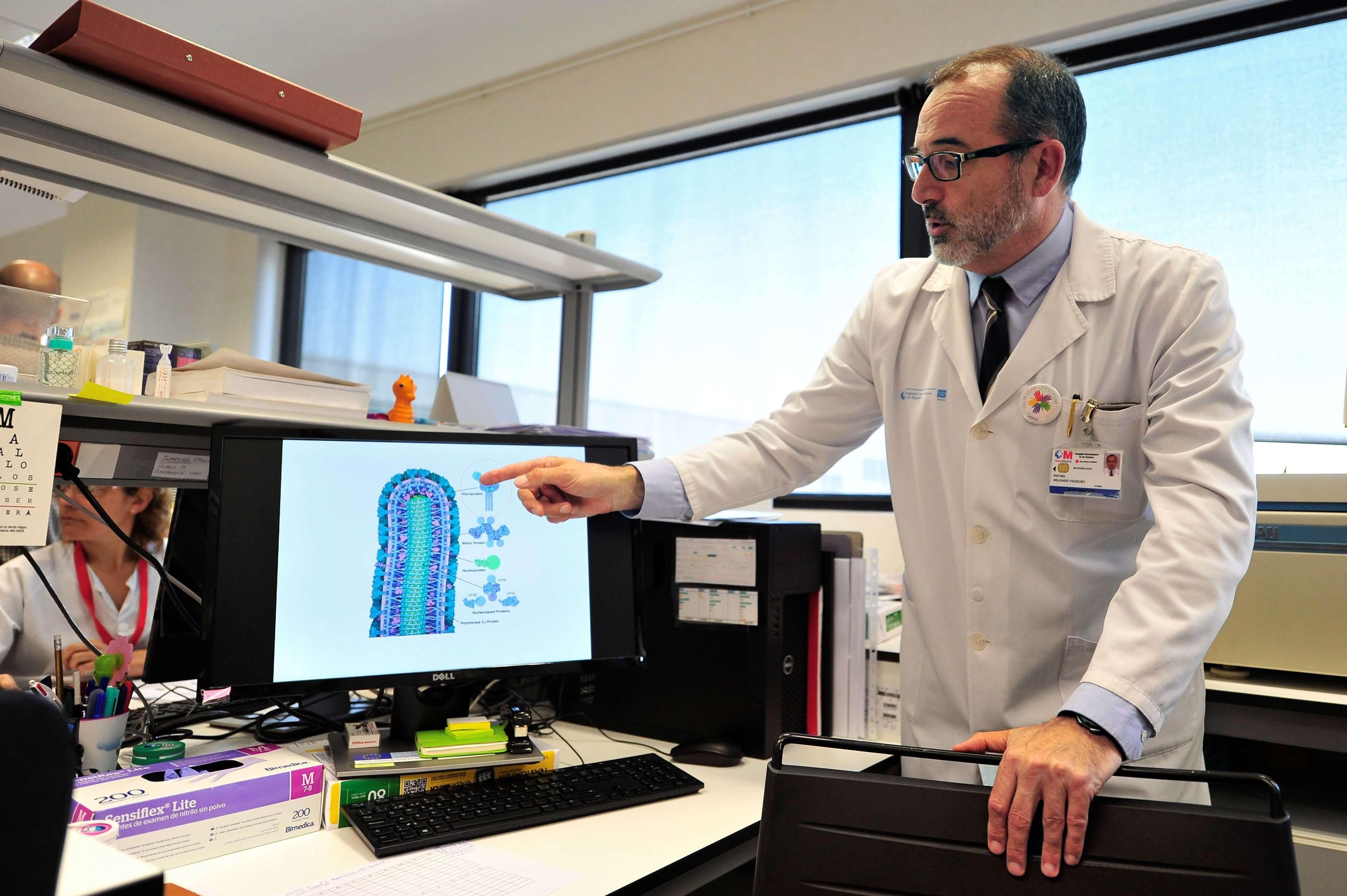 Sobrevivientes al ébola generan anticuerpos contra el virus, según investigación de científicos españoles