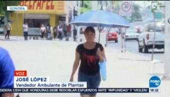 Altas Temperaturas Prevalecerán Sonora