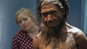 Neandertal pudo haber desaparecido debido al clima