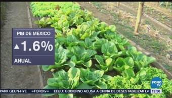Pib México Disminuye 0.2% Segundo Trimestre Inegi