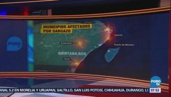 Sargazo tiene impacto negativo, pero turismo no disminuye: Enrique de la Madrid
