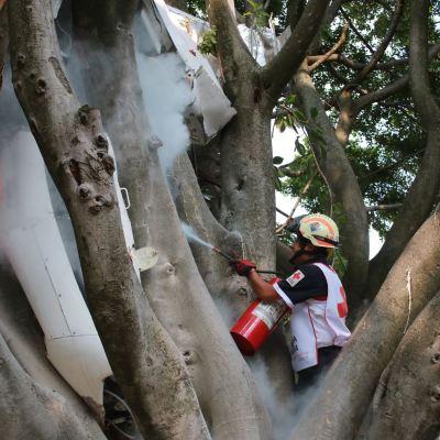 Avioneta cae sobre copa de árbol en Cuernavaca; hay dos lesionados