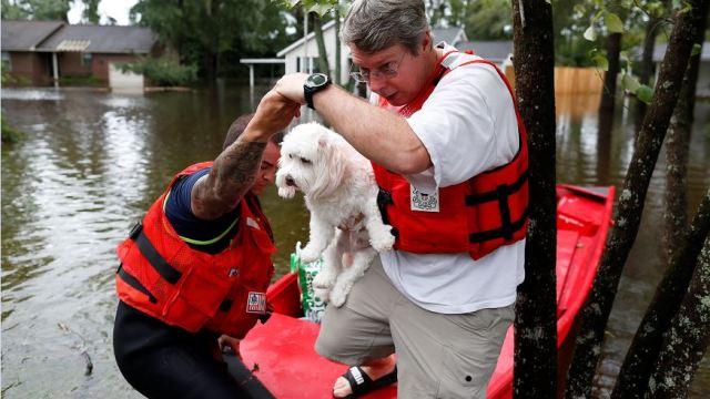 Florence; rescatan a decenas de personas en Las Carolinas