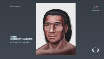 La evolución del rostro humano