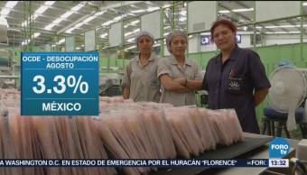 México, Entre Países Con Baja Desocupación OCDE