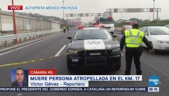 Muere persona atropellada en autopista México-Pachuca