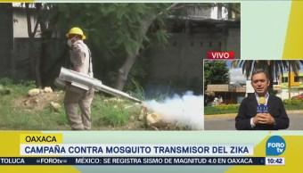 Oaxaca realiza campaña contra mosquito transmisor del zika
