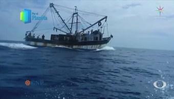 Por el Planeta Sobrepesca en el Mar de Cortés