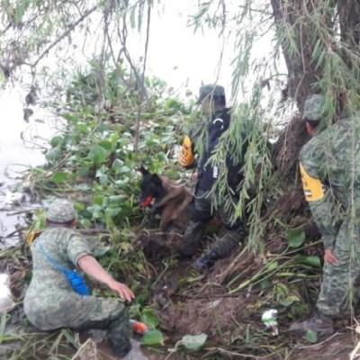 Sedena anuncia hallazgo de cuerpo por inundaciones en Sinaloa; suman cuatro muertos