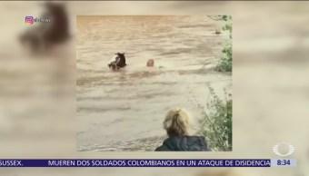 Hombre salta a un campo inundado para rescatar a caballo